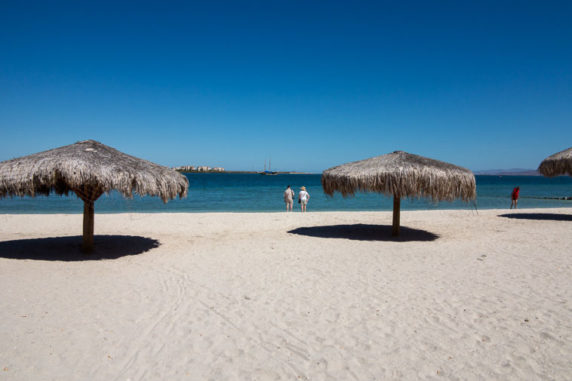 The 5 Amazing Things to Do in La Paz, Mexico