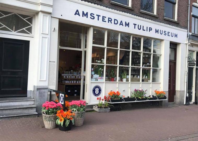 The Tulip Museum