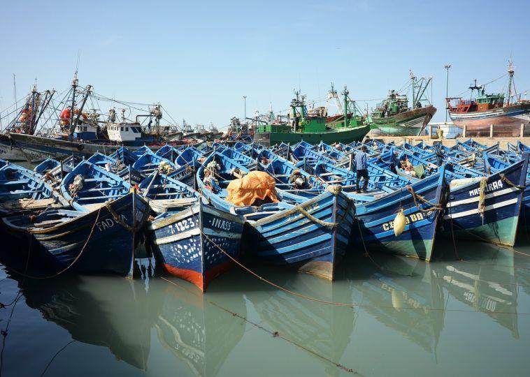Seafood Heaven in Essaouira