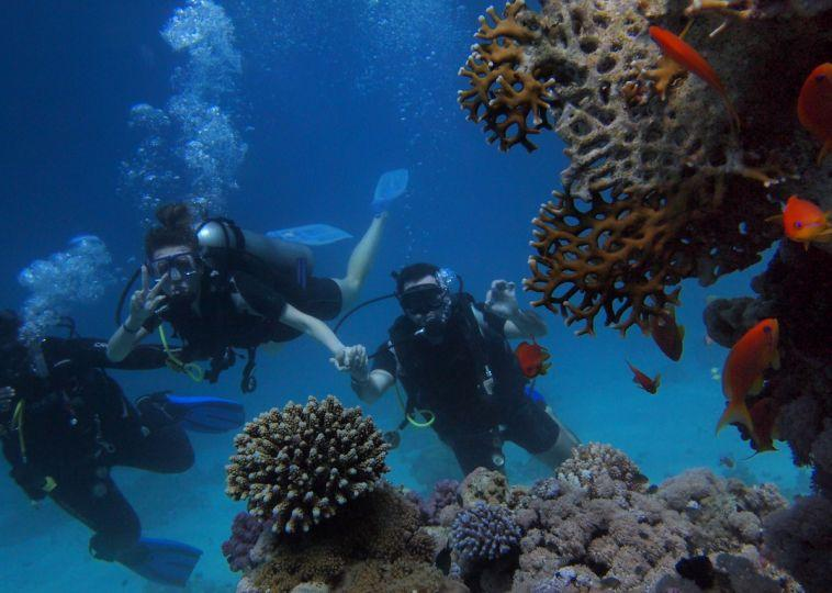 5 Most Unique Places to Go Scuba Diving